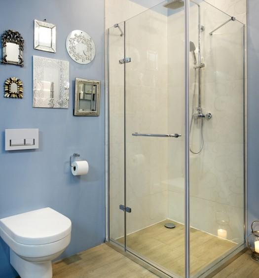 Bathroom Bizarre