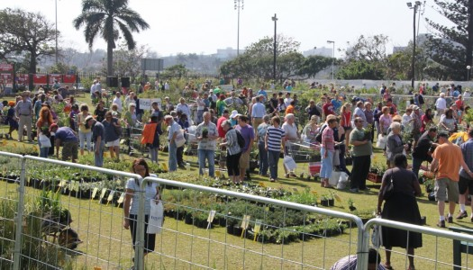 Botanical Society Indigenous Plant Fair – Durban