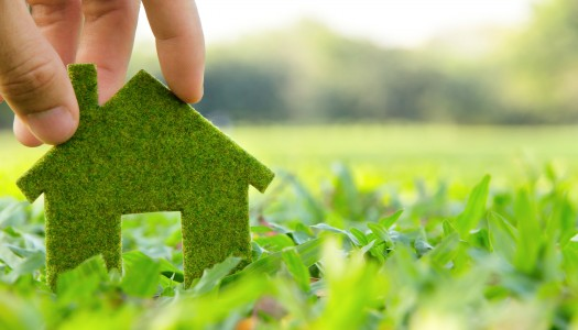 Top tips for energy efficient homes