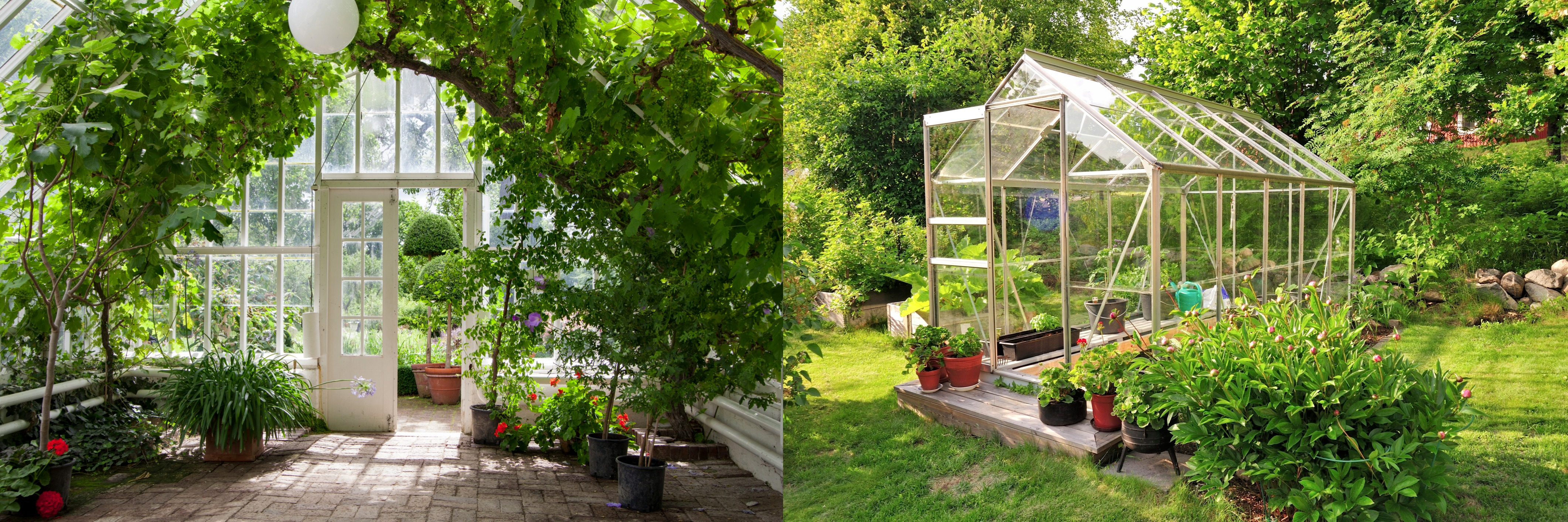 gardening for of to do tips growing in greenhouse house aren garden polytunnels pin planning just decor lots t