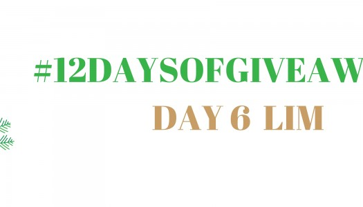 Day 6 of 12 Days!