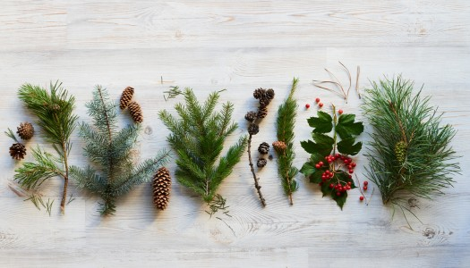 All-natural Christmas decor