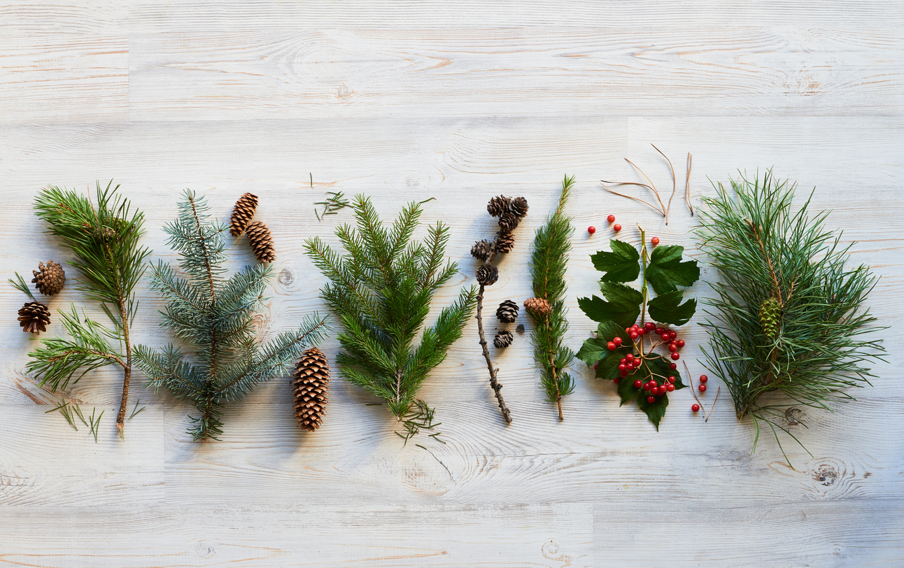 all natural christmas decor