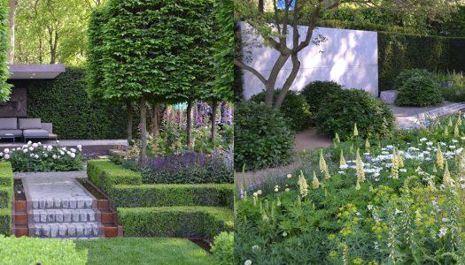 How to plan a designer garden