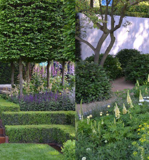 Jamie Ross Garden And Landscape Design : Jamie d design s eco friendly product range