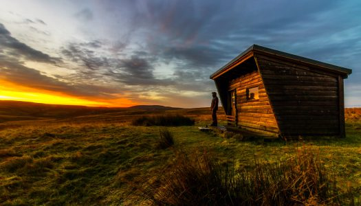 The tiny house phenomenon