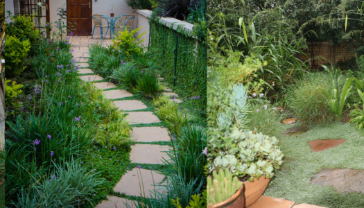 Fuss-free gardens